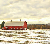 Barn in winter — Stock Photo