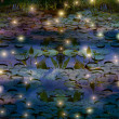 Fireflies and water lily pond at night — Stock Photo #26848129