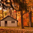 Building in autumn woods — Stock Photo