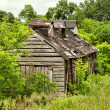 Stock Photo: Shack in woods