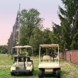 Golf carts — Stock Photo #29901677