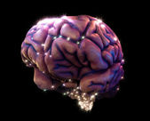 Brain depiction — Stock Photo