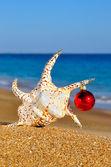 Christmas seashell on the sandy beach — Stock Photo