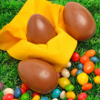 Royalty-Free Stock Photo: Three chocolate easter eggs on the green grass