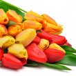 Bunch of fresh red and yellow tulips - Stock Photo