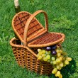 Picnic basket with ripe grape, bottle of wine on the grass — Stock Photo