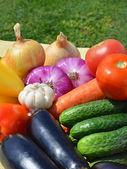 Raw, ripe vegetables on the green grass — Stock Photo