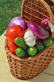 Raw, ripe vegetables in the picnic basket — Stock Photo