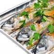 Fresh mackerel fish with parsley on the aluminium foil tray — Stock Photo
