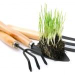 Shovel, rake, garden tools with green root grass — Stock Photo #42312445
