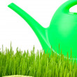 Plastic watering can and green grass — Stok fotoğraf