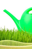 Plastic watering can and green grass — ストック写真