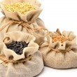 Wheat grains, oat grains and sunflower seeds in the cloth sacks — Stock Photo #49797463