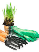 Rake, shovel, rubber gloves, steel pot with green grass  — Stock Photo