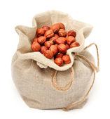 Hazelnut i the sack bag — Stock Photo