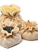 Wheat grains, oat grains and sunflower seeds in the cloth sacks — Stock Photo