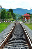 Railway track near the green forest — Stock Photo