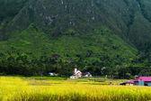 Iglesia católica cerca de la aldea de ambarita. — Foto de Stock