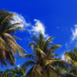 Thailand Blue Sky. — Stock Photo