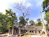 Prasat Ta Prum View. — Stock Photo