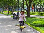 Vendedores de fruta en las calles de hanoi. — Foto de Stock
