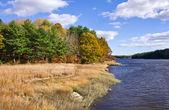 Giornata di sole presso un fiume — Foto Stock