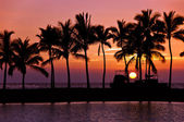 Sunset silhouettes in Hawaii — Foto Stock