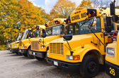 Yellow school buses — Foto Stock