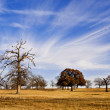 Cloud formation and blue Texas sky — Stock Photo