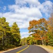 Winding road in the autumn — Stock Photo