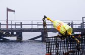 Lobster buoy and traps — Stock Photo