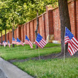 American flags on the street side — Stock Photo #24030381