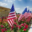 American flags on the street side — Stock Photo #27891565
