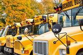 Rij van gele schoolbussen — Stockfoto