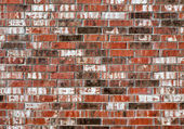 Brick texture wall background — Stock Photo