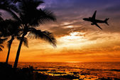Tropical sunset with palm tree and airplane silhouettes — Foto Stock
