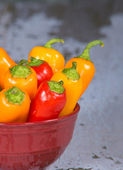 Sweet mini peppers in red bowl — Foto Stock