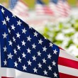 Row of American flags on street side — 图库照片