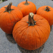 Assorted pumpkins in preparation for Halloween — Stock Photo #14059983