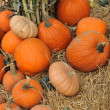 Assorted pumpkins in preparation for Halloween — Stock Photo #14060235