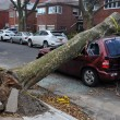 Hurricane Sandy in Brooklyn, New York, U.S. — Stock Photo