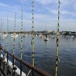 les cannes à pêche sur le bateau — Photo