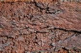 поверхности трещины кирпича — Стоковое фото