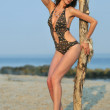 Model posing pretty at rocky beach in designers animal printed swimsuit — Stock Photo