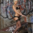 Gorgeous blond young woman next to a wall of graffiti wearing lingerie - Stock Photo