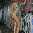 Stock Photo: Sexy Spanish womposing against graffiti wall in Lingerie