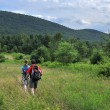 Hikers in Catskill mountains, upstate New York - Stock Photo