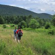 Hikers in Catskill mountains, upstate New York — Foto Stock