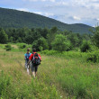 Hikers in Catskill mountains, upstate New York — Stock fotografie