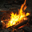 Camp fire burning in the night — Stock Photo